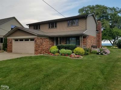 Harrison Twp Single Family Home For Sale: 37500 Lakeshore
