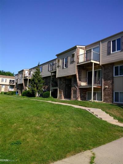 Clinton Township Condo/Townhouse For Sale: 38272 Fairway