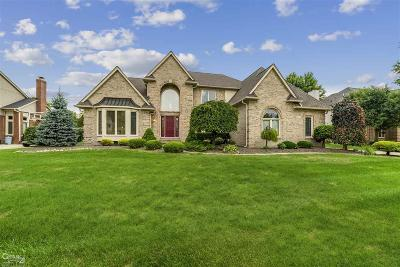 Shelby Twp Single Family Home For Sale: 15075 Cranbrook