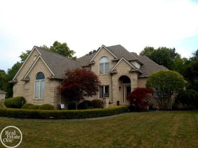Chesterfield Twp Single Family Home For Sale: 49302 Monte Rd