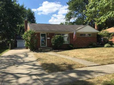Mount Clemens Single Family Home For Sale: 939 Harrington