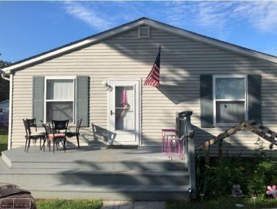 Algonac Single Family Home For Sale: 971 Columbia St.