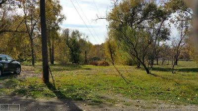 Clinton Township Residential Lots & Land For Sale: 37452 Hayes