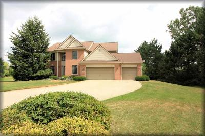 Macomb Single Family Home For Sale: 70692 Hillside Ct