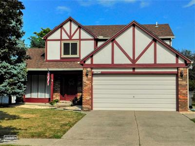 Clinton Township Single Family Home For Sale: 41862 Stratton Dr