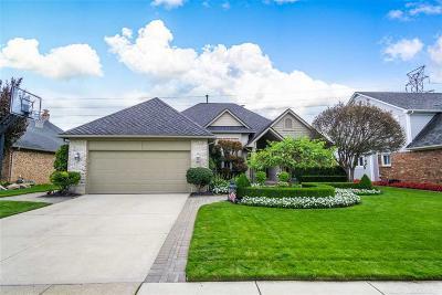Macomb Single Family Home For Sale: 43394 Hillsboro