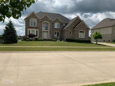 Shelby Twp Single Family Home For Sale: 4248 Forster Lane