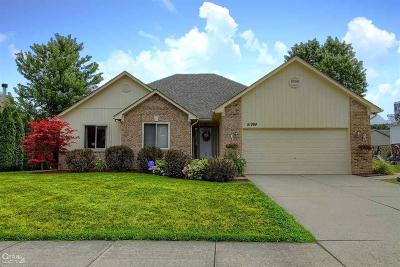 Chesterfield Single Family Home For Sale: 51984 Plum Creek
