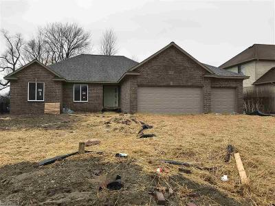 Chesterfield Twp Single Family Home For Sale: 26627 Creek View Dr N