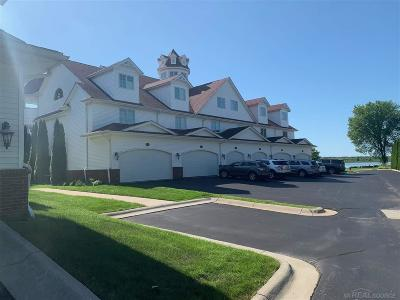 Clay Twp Single Family Home For Sale: 9986 Tashmoo