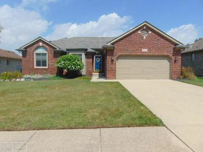 Chesterfield Single Family Home For Sale: 34169 Summerhill