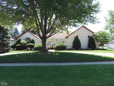 Shelby Twp Single Family Home For Sale: 11696 Ridge
