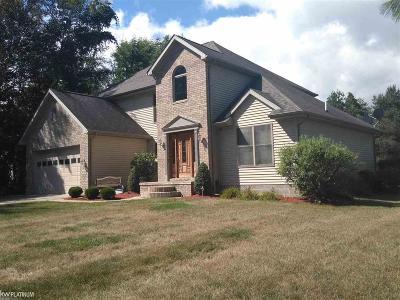 Lexington MI Single Family Home For Sale: $264,900