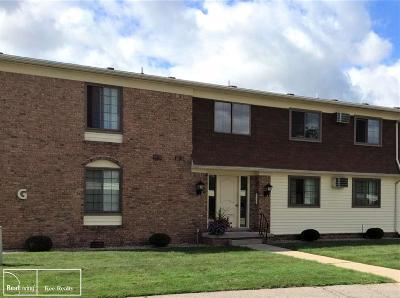 Marysville MI Condo/Townhouse For Sale: $100,000