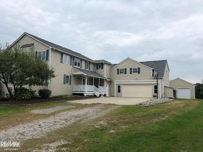Clinton Township MI Single Family Home For Sale: $410,000