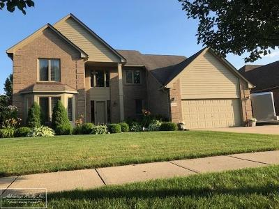 Chesterfield MI Single Family Home For Sale: $304,899