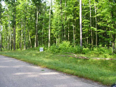 Menominee County, Marinette County Residential Lots & Land For Sale: Hydro Court