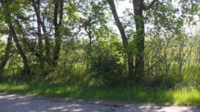 Menominee County, Marinette County Residential Lots & Land For Sale: Faxton Street