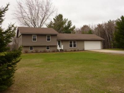 Pound WI Single Family Home For Sale: $139,900