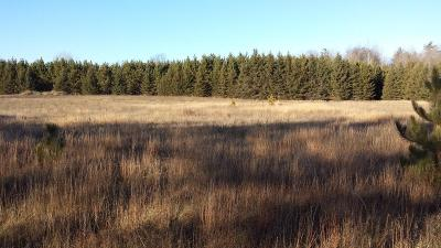Menominee County, Marinette County Residential Lots & Land For Sale: County Road Z