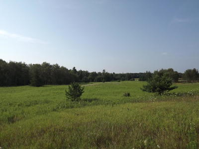 Menominee MI Residential Lots & Land For Sale: $42,000