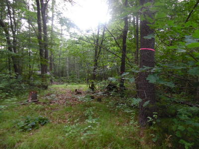 Menominee County, Marinette County Residential Lots & Land For Sale: Murray Lane