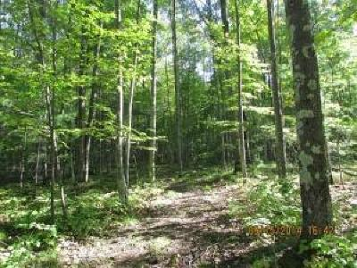 Menominee County, Marinette County Residential Lots & Land For Sale: Lot # 58 Hwy Jj