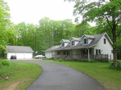 Menominee County Single Family Home For Sale: N17078 County Road 400
