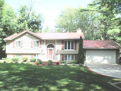 Marinette County Single Family Home For Sale: N7134 Shady Lane Drive