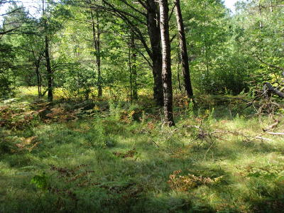 Menominee County, Marinette County Residential Lots & Land For Sale: Tanglewood Road
