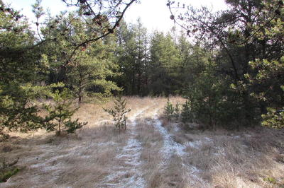 Menominee County, Marinette County Residential Lots & Land For Sale: Lot 8 Silver Creek Road