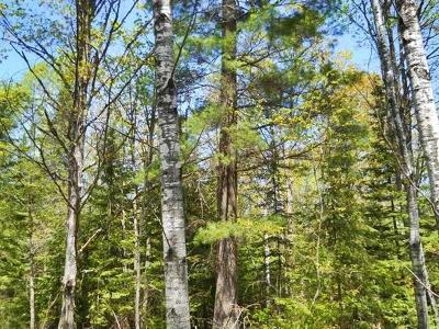 Menominee County, Marinette County Residential Lots & Land For Sale: Holmes Jct. Plat West Road