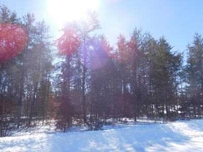 Menominee County, Marinette County Residential Lots & Land For Sale: 2nd Avenue