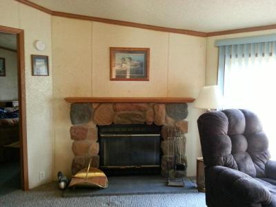 Crivitz Single Family Home For Sale: N10360 Deer Lake Road