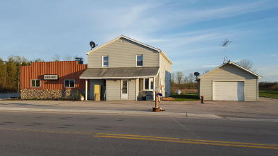 Peshtigo WI Single Family Home For Sale: $145,000