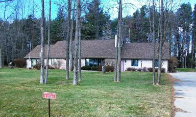 Menominee Single Family Home For Sale: N2281 State Highway M35