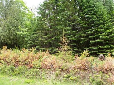 Wausaukee WI Residential Lots & Land For Sale: $105,000