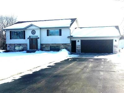 Menominee Single Family Home For Sale: W6621 38th Rd No 1.25