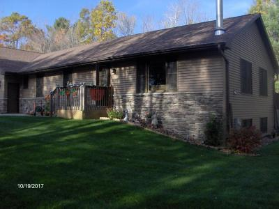 Marinette County Single Family Home For Sale: W9798 County Q Road