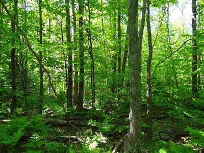 Menominee County, Marinette County Residential Lots & Land For Sale: Shangrila Drive
