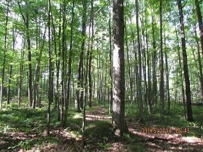 Menominee County, Marinette County Residential Lots & Land For Sale: Menominee Woods Drive