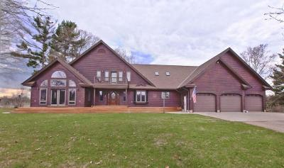 Menominee County Single Family Home For Sale: W5710 Hwy 41