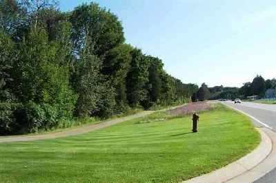 Petoskey MI Residential Lots & Land For Sale: $150,000