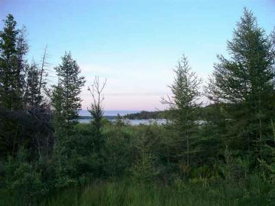 Conway MI Residential Lots & Land For Sale: $35,750