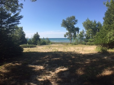 Charlevoix Single Family Home For Sale: 12515 Meanderline