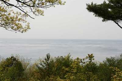 Harbor Springs Single Family Home For Sale: 5074 Seven Mile Point Ridge