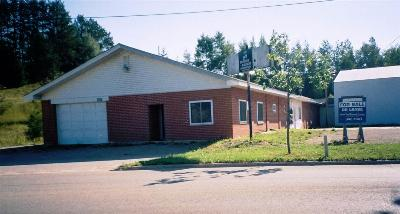 Petoskey Commercial For Sale: 1601 Standish