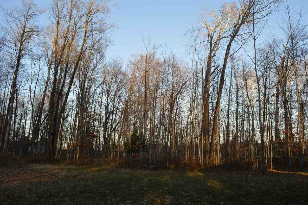 Michigan emmet county alanson - Listing 7940 Lakeview Alanson Mi Mls 450240 Commercial Real Estate In Petoskey Emmet County Mi Petoskey Homes For Sale Property Search In