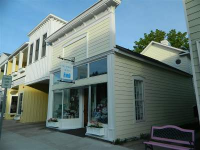 Harbor Springs Single Family Home For Sale: 240 Main