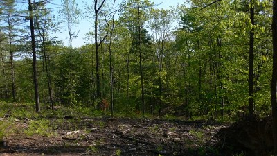 Residential Lots & Land For Sale: Unit 5 Vistas Of Walloon #5